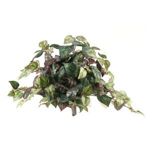 Oxalis Ivy Tile Topper