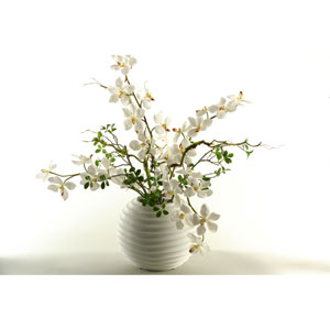 White Vanda Orchids in Contemporary White Resin Ball Planter
