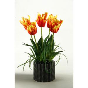 Orange Parrot Tulips in Black Resin Planter