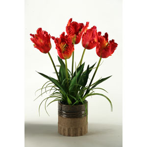 Large Red Parrot Tulips in Ceramic Planter