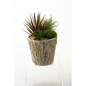 Easter Grass and Succulents in Oak Look Cement Planter