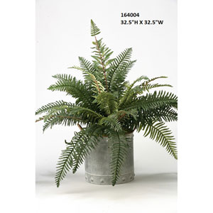 River Fern in Round Metal Planter
