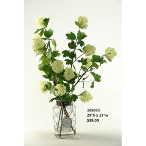 Cream and Green Snowball Branches in Glass Jar