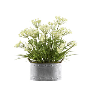 Queen Annes Lace and Grass in Oval Metal Planter