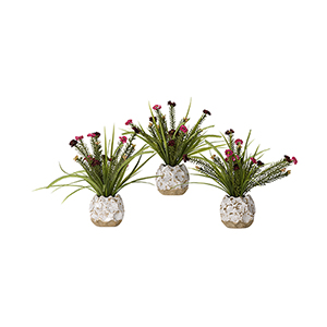 Pink and Burgundy Wild Flowers in Ceramic Planter, Set of Three
