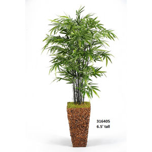 6.5 Ft. Bamboo Tree in Square Banana Leaf Basket