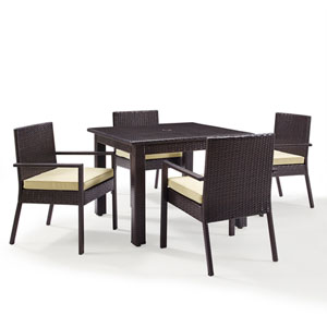 Palm Harbor Brown Outdoor Wicker 5 Piece Dining Set
