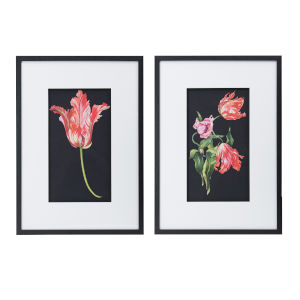 Multicolor Framed Floral Wall Art, Set of 2