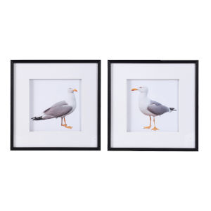 Multicolor Framed Seagull Wall Art, Set of 2