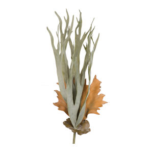 Dark Green Faux Mature Reindeer Grass Stem