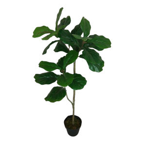 Green 43-Inch Poted Feddle Leaf Tree