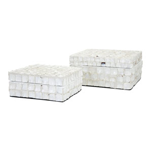 Barbuda Shell Boxes, Set of 2