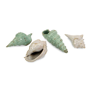 Sea Shells Collection - Set of Four