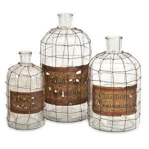 Dimora Clear Wire Caged Bottle, Set of Three
