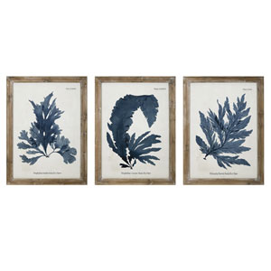 Lucia Wall Decor, Set of 3