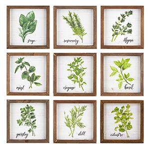 Green Herb Wall Art, Set of 9