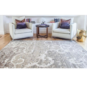 Abacasa Sonoma Chauncy Grey/Chocolate Area Rug