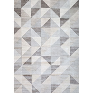 Sonoma Colburn Silver and Grey Rectangular: 5 Ft 3 In x 7 Ft 6 In Rug
