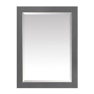 Twilight Gray 22-Inch Mirror Cabinet