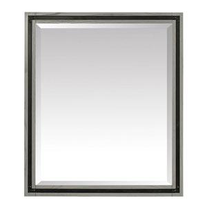 Dexter Rustic Gray 30-Inch Mirror