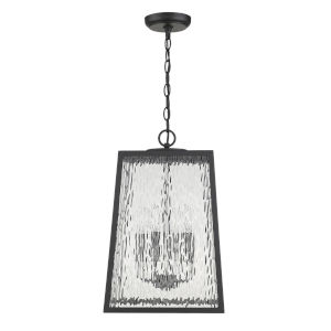 Hirche Matte Black Four-Light Outdoor Hanging Pendant