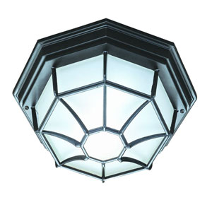 Matte Black Flushmounts Two-Light Ceiling Fixture