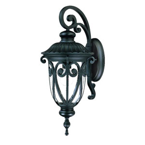 Naples Matte Black One-Light 22.75-Inch Outdoor Wall Mount