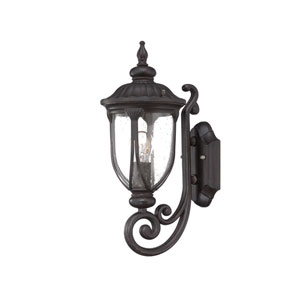 Laurens Black Coral 7-Inch One-Light Outdoor Bottom Mount Wall Fixture with Clear Seeded Glass