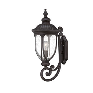 Laurens Black Coral 9-Inch One-Light Outdoor Wall Mount with Clear Seeded Glass