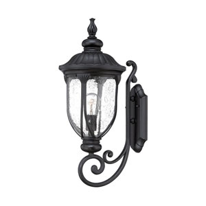 Laurens Matte Black 9-Inch One-Light Outdoor Wall Mount with Clear Seeded Glass