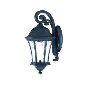 Waverly Matte Black One-Light 16.5-Inch Outdoor Wall Mount