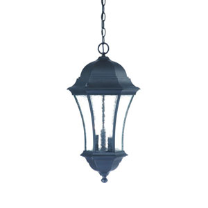Waverly Matte Black Three-Light 23.5-Inch Outdoor Pendant
