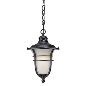 Montclair Matte Black One-Light Outdoor Hanging Fixture with Frosted Seeded Glass