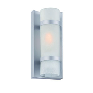 Apollo Brushed Silver One-Light Outdoor Wall Mount