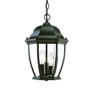 Wexford Matte Black Three-Light 14.5-Inch Outdoor Pendant