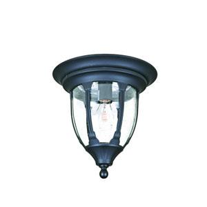 Suffolk Matte Black One-Light Ceiling Fixture