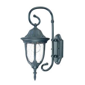 Suffolk Matte Black One-Light Outdoor Wall Mount with Clear Seeded Glass