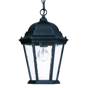Richmond Matte Black One-Light 14-Inch Outdoor Pendant