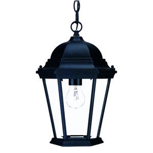 Richmond Matte Black One-Light Hanging Fixture