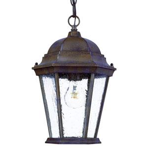 Richmond Burled Walnut One-Light 14-Inch Outdoor Pendant