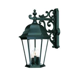 Richmond Matte Black Three-Light 23.5-Inch Outdoor Wall Mount