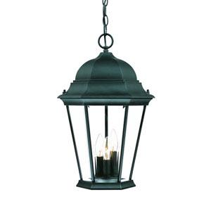 Richmond Matte Black Three-Light 19.5-Inch Outdoor Pendant