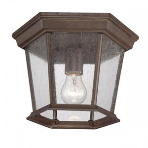 Dover Burled Walnut One-Light Outdoor Ceiling Mount with Clear Seeded Glass