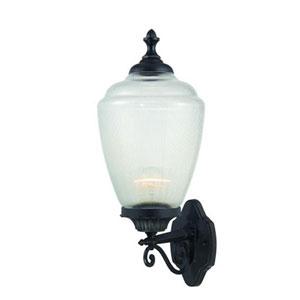 Acorn Matte Black Wall Lantern