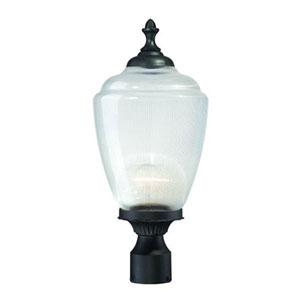 Acorn Matte Black Post Lantern