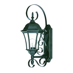 New Orleans Matte Black One-Light 22-Inch Outdoor Wall Mount