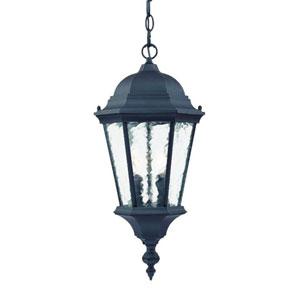 Telfair Matte Black Two-Light 20-Inch Outdoor Pendant