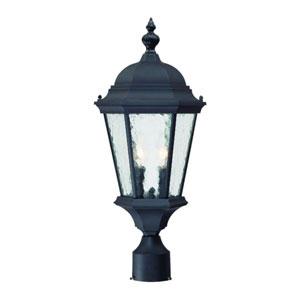 Telfair Matte Black Two-Light 21.5-Inch Outdoor Post Mount
