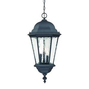 Telfair Matte Black Three-Light 25.5-Inch Outdoor Pendant