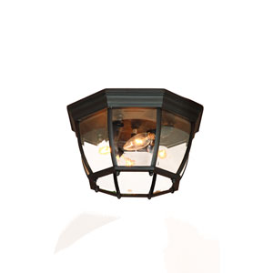 Matte Black Four-Light Ceiling Fixture